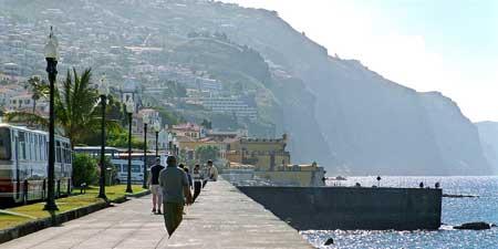Emprego Funchal
