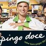 Recrutamento Pingo Doce